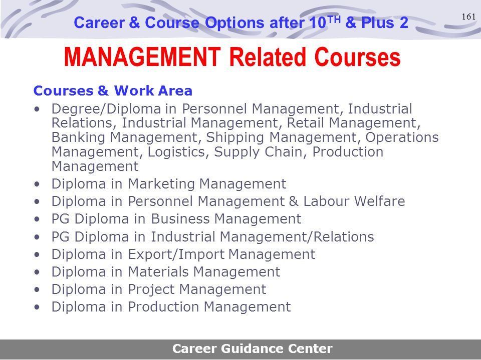 MANAGEMENT Related Courses