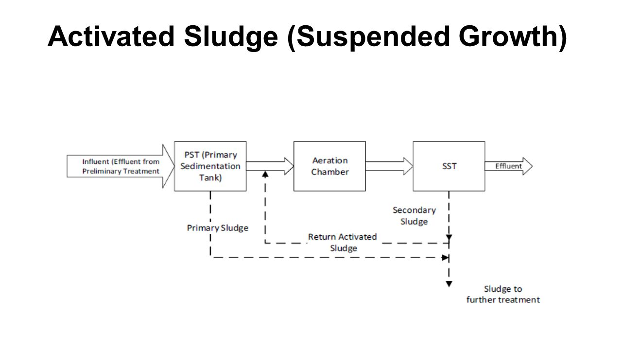 Activated Sludge (Suspended Growth)