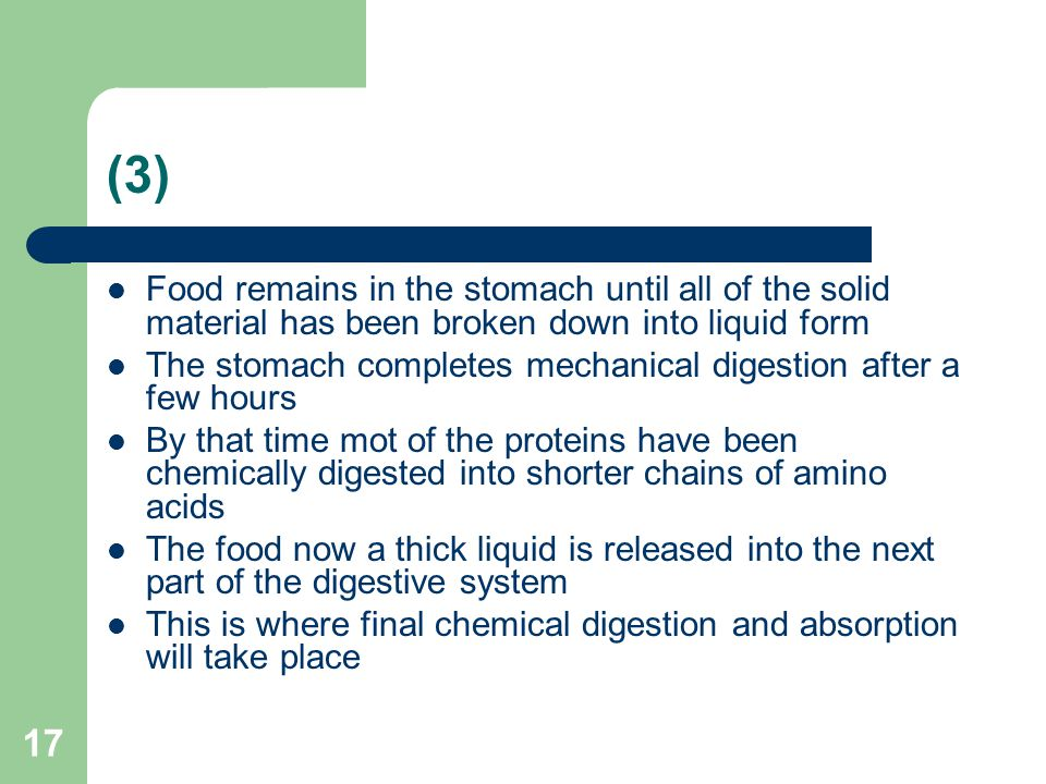 (3) Food remains in the stomach until all of the solid material has been broken down into liquid form.