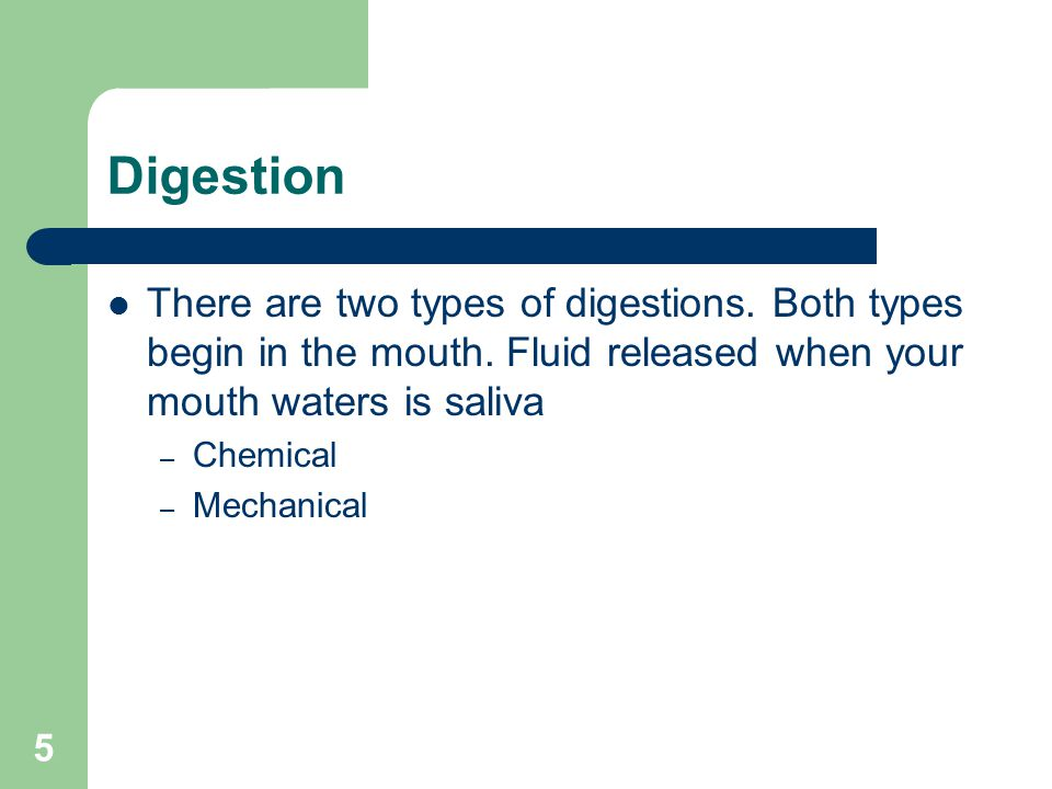 Digestion There are two types of digestions. Both types begin in the mouth. Fluid released when your mouth waters is saliva.