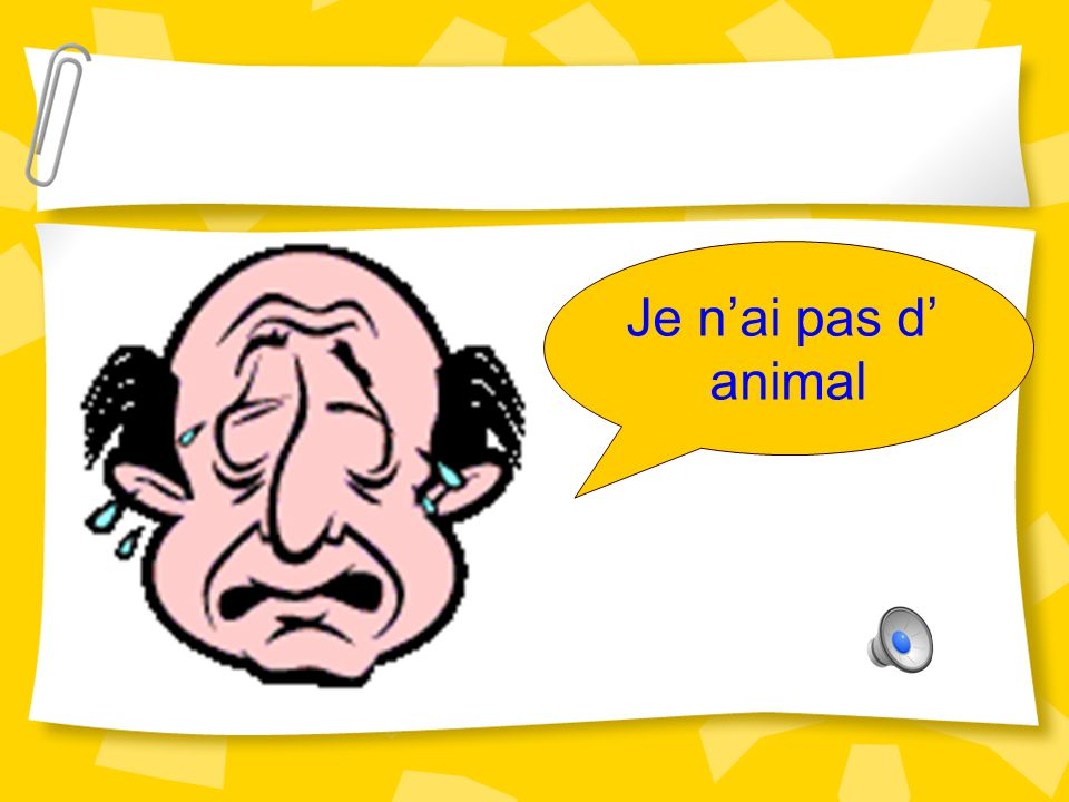 Je n'ai pas d' animal