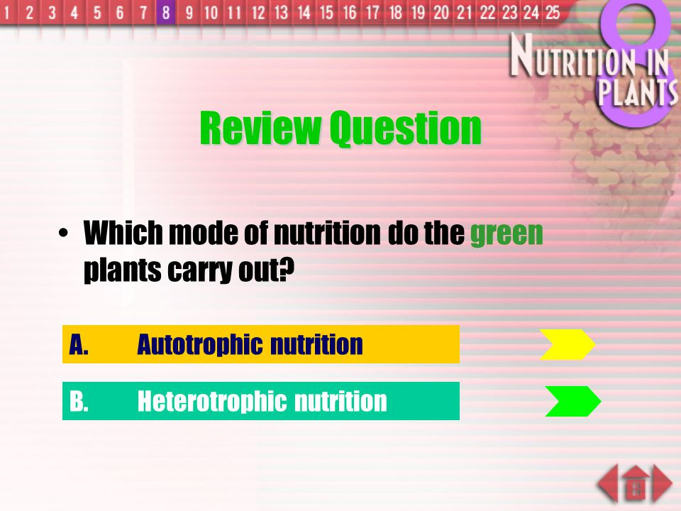 Review Question Which mode of nutrition do the green plants carry out