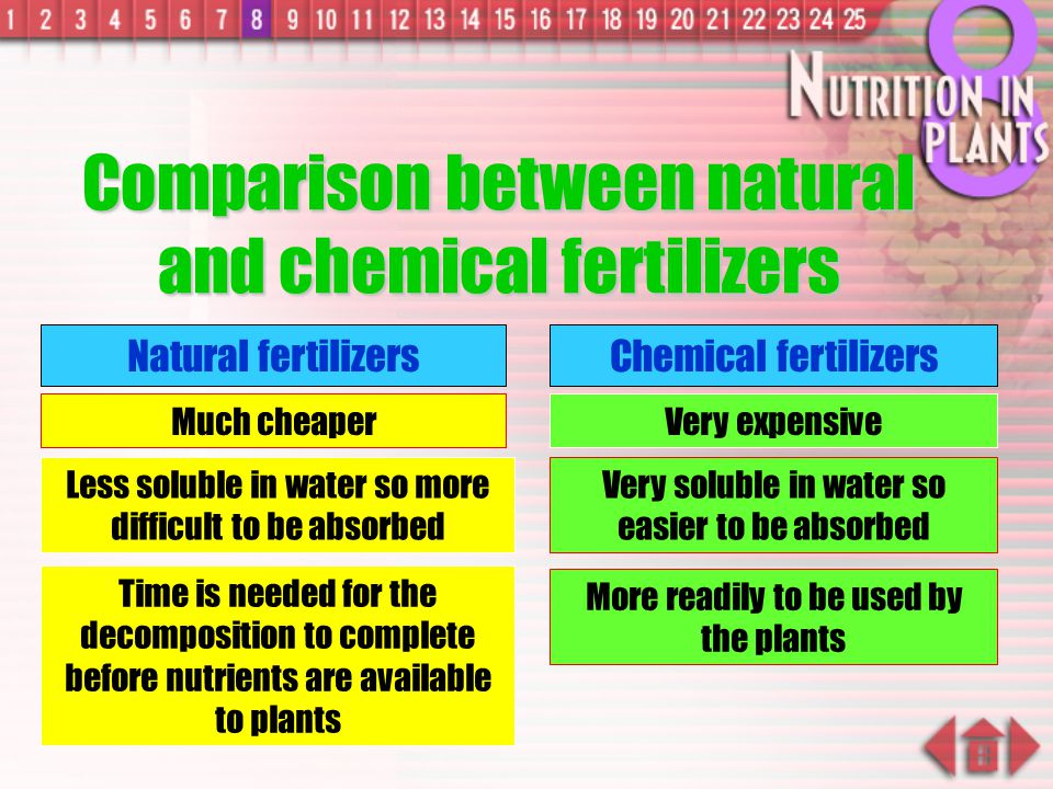 Comparison between natural and chemical fertilizers