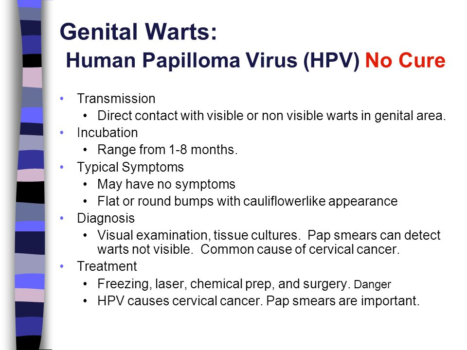 Chapter 15 Preventing Sexually Transmitted Disease - ppt video