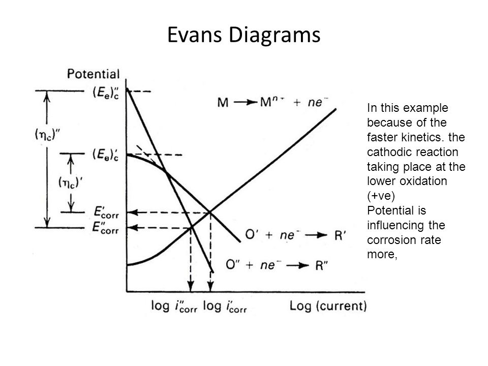 Evans diagram iron water wiring library evans diagrams ppt video online download rh slideplayer com iron pig diagram iron pig diagram ccuart Choice Image