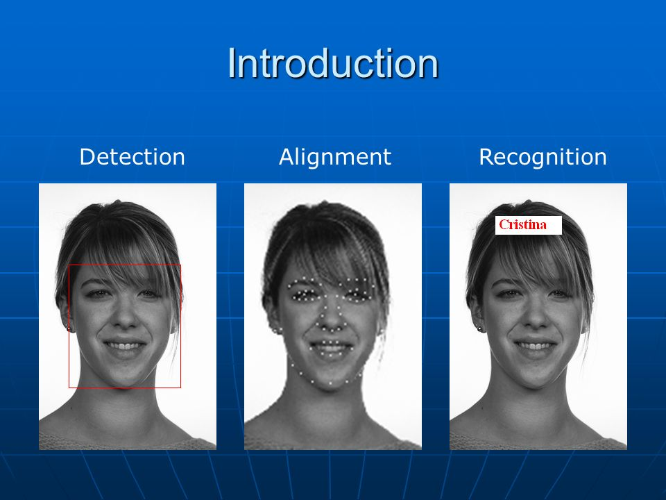 Introduction Detection Alignment Recognition