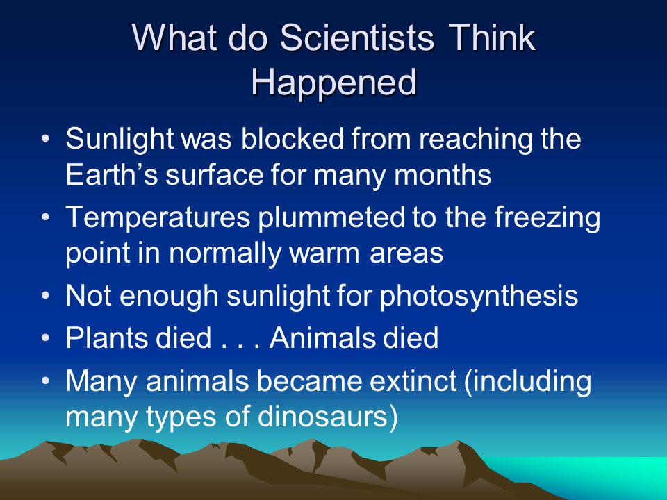 What do Scientists Think Happened