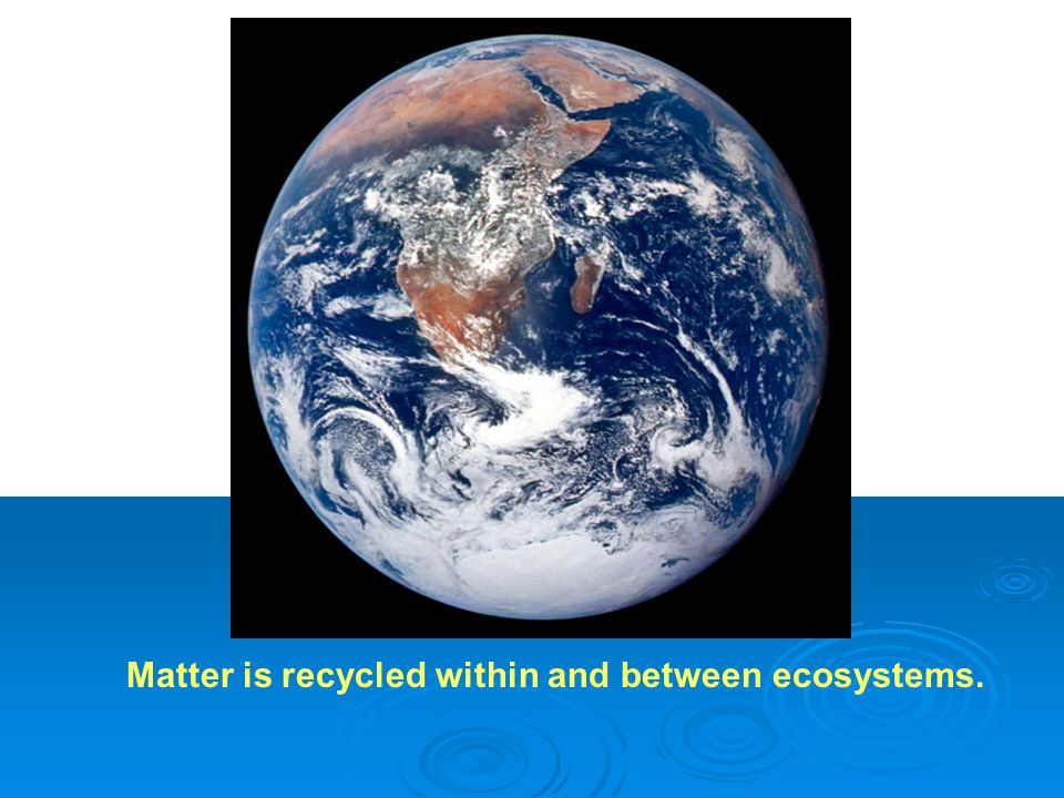 Earth Photo Matter is recycled within and between ecosystems.