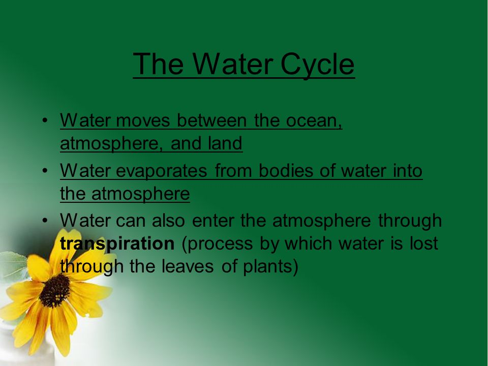 The Water Cycle Water moves between the ocean, atmosphere, and land