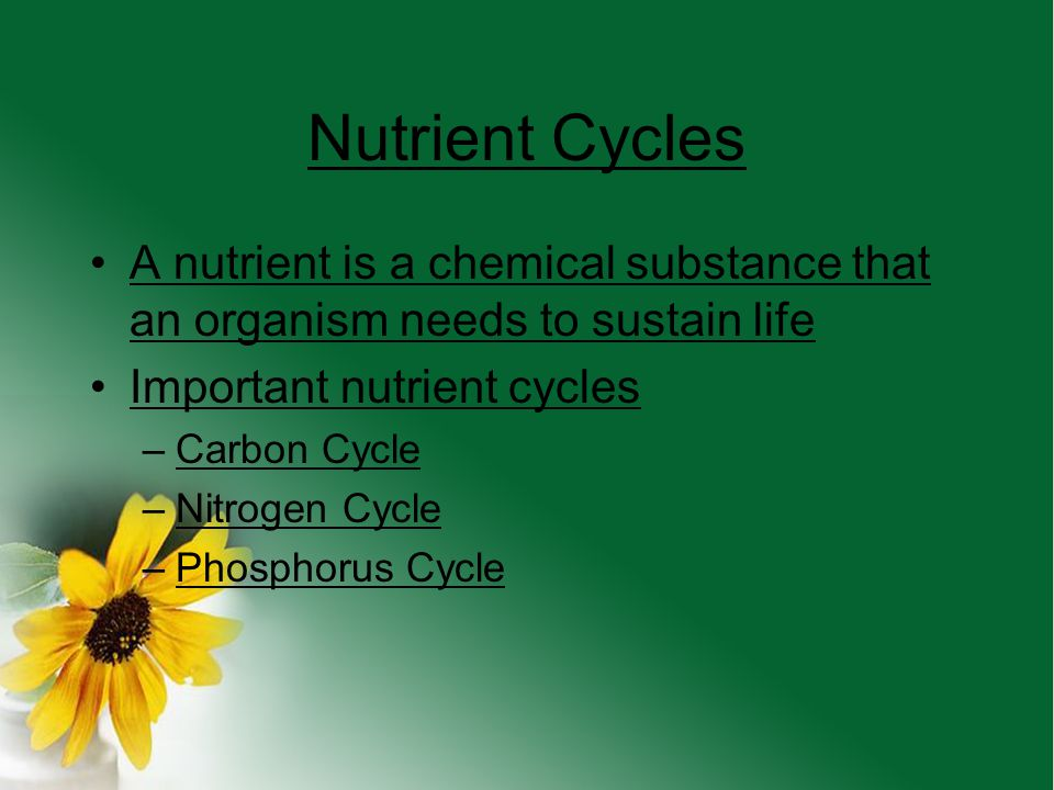Nutrient Cycles A nutrient is a chemical substance that an organism needs to sustain life. Important nutrient cycles.