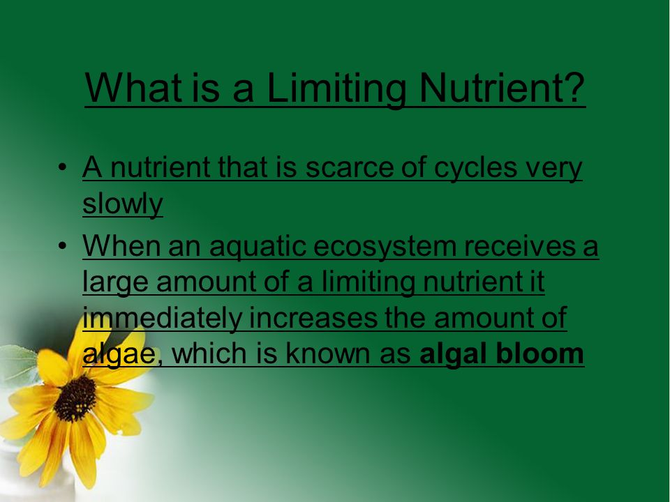 What is a Limiting Nutrient