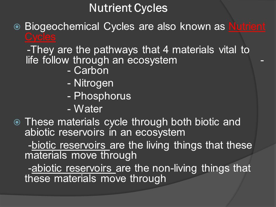 Nutrient Cycles Biogeochemical Cycles are also known as Nutrient Cycles.