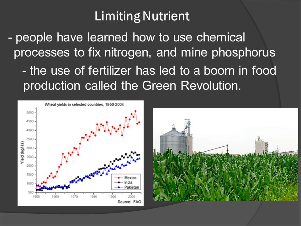 Limiting Nutrient - people have learned how to use chemical processes to fix nitrogen, and mine phosphorus.