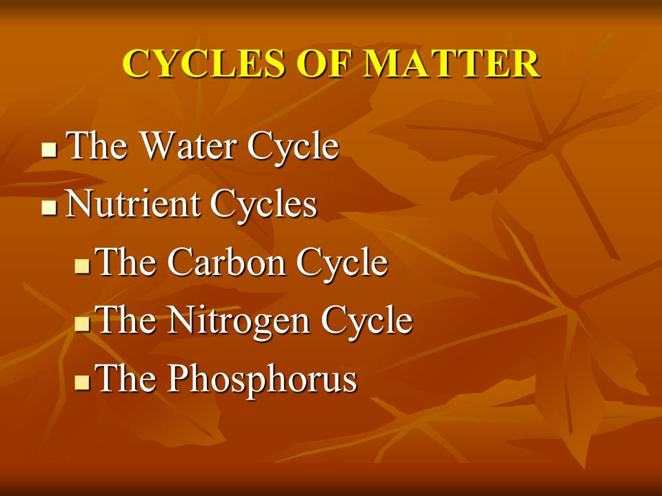 CYCLES OF MATTER The Water Cycle Nutrient Cycles The Carbon Cycle The Nitrogen Cycle The Phosphorus