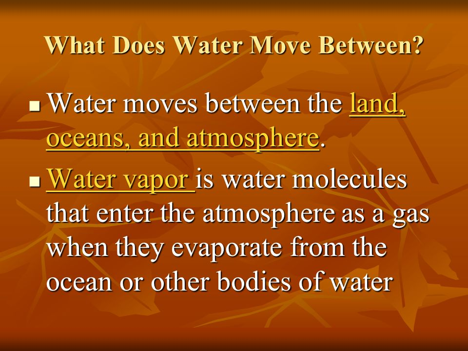 What Does Water Move Between