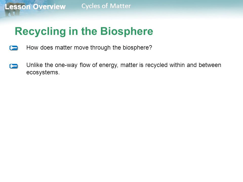 Lesson Overview 3 4 Cycles Of Matter Ppt Video Online Download