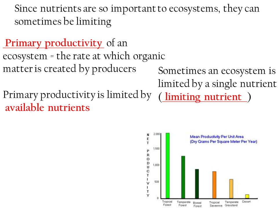 Since nutrients are so important to ecosystems, they can sometimes be limiting