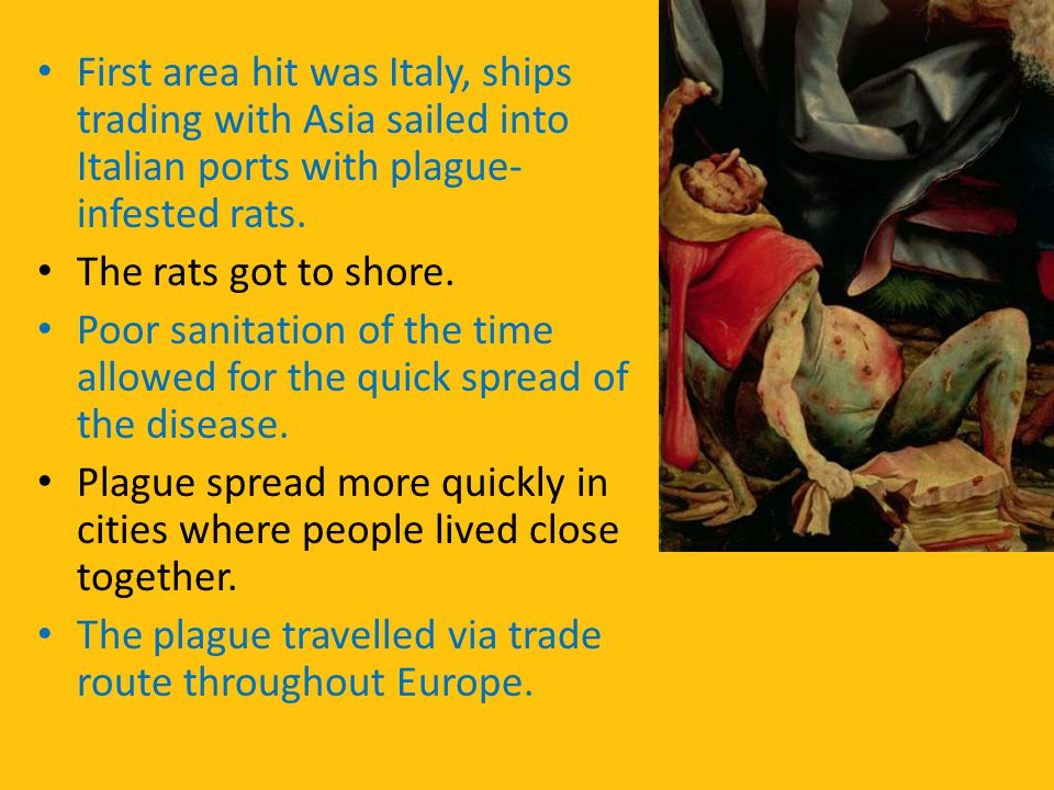 First area hit was Italy, ships trading with Asia sailed into Italian ports with plague-infested rats.
