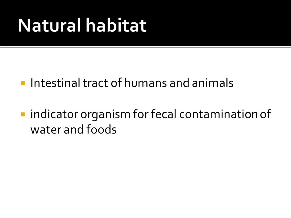 Natural habitat Intestinal tract of humans and animals