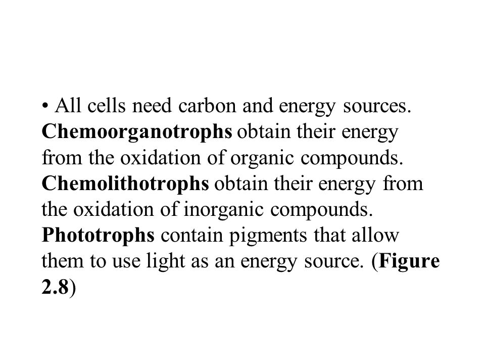 All cells need carbon and energy sources