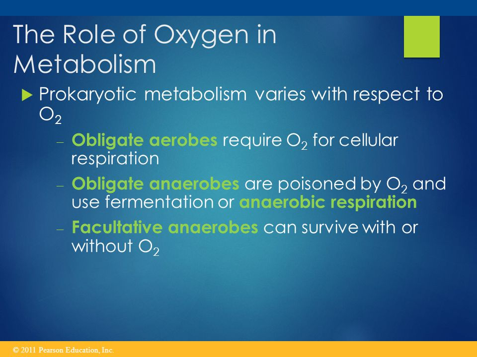 The Role of Oxygen in Metabolism