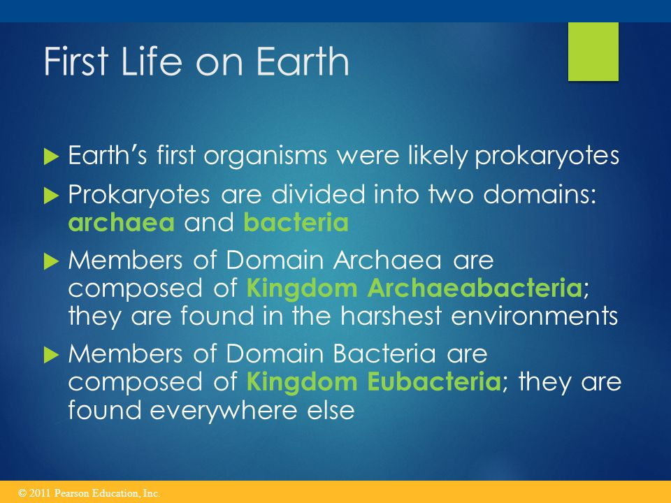 First Life on Earth Earth's first organisms were likely prokaryotes