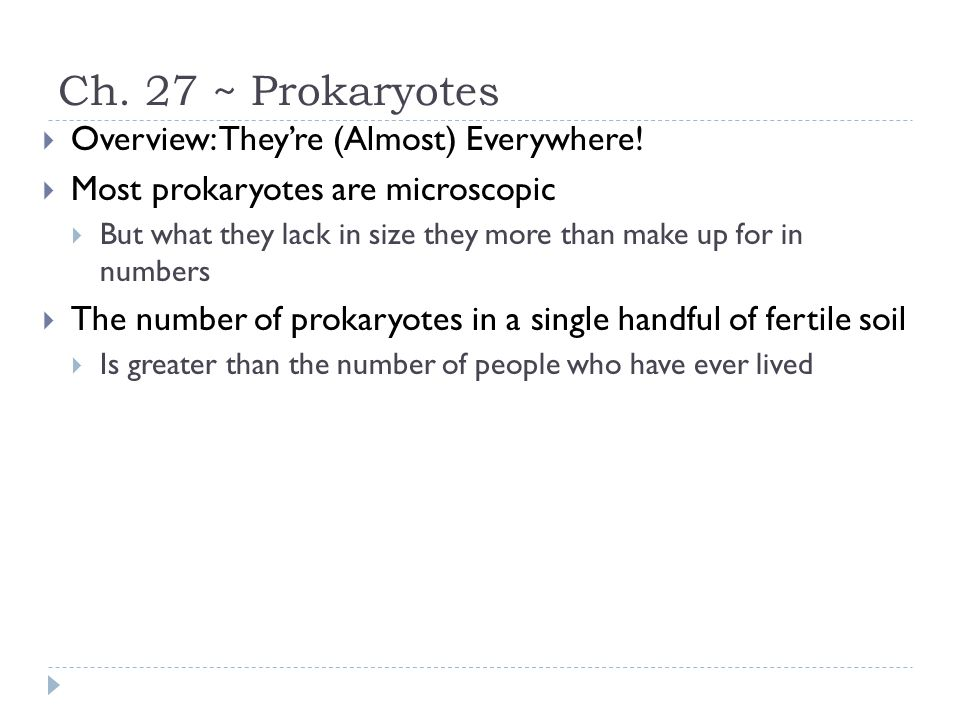 Ch. 27 ~ Prokaryotes Overview: They're (Almost) Everywhere!