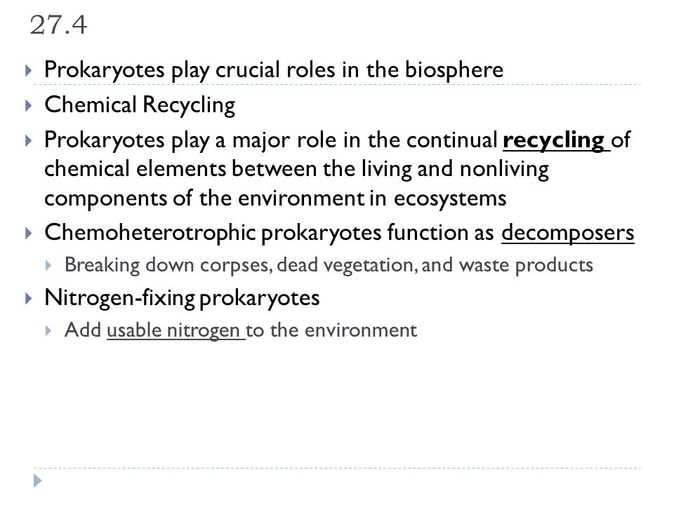 27.4 Prokaryotes play crucial roles in the biosphere