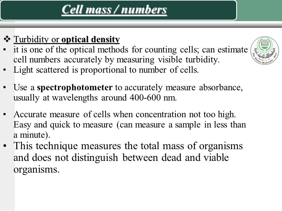 Cell mass / numbers Turbidity or optical density.