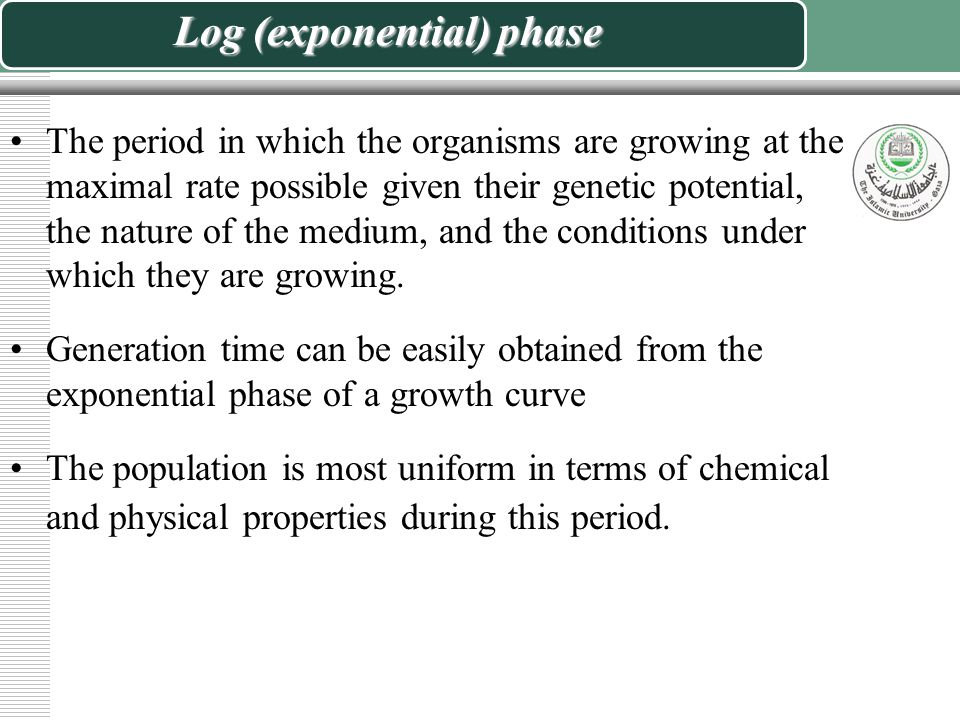 Log (exponential) phase