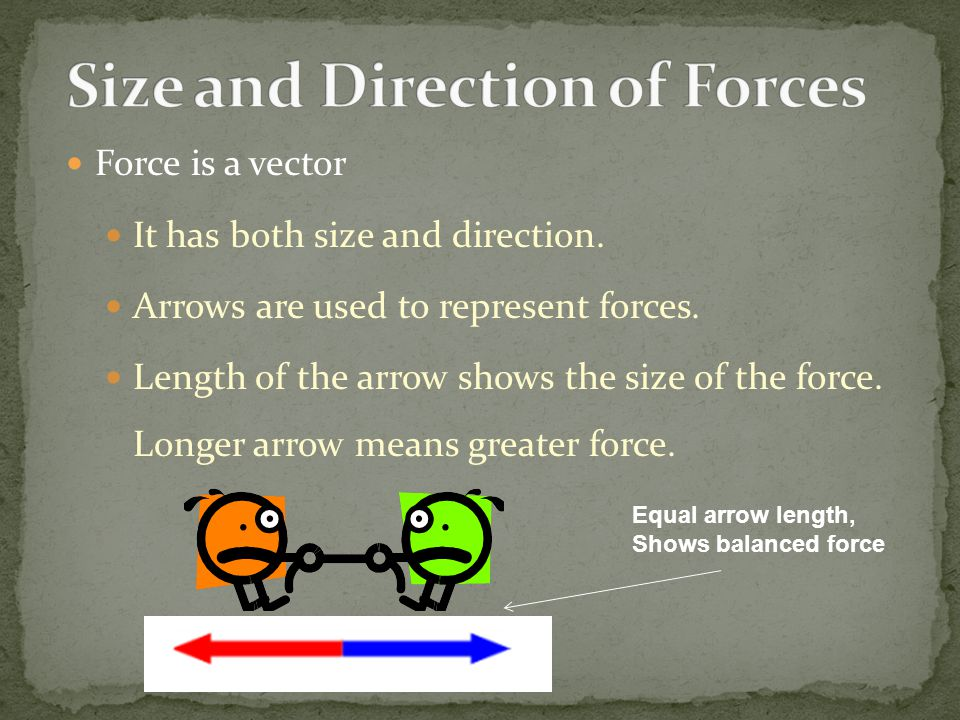 Size and Direction of Forces
