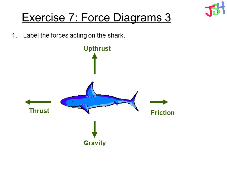 forces types of forces contact and non contact forces friction ppt rh slideplayer com Anatomical Body Diagram Body Anatomy Diagram