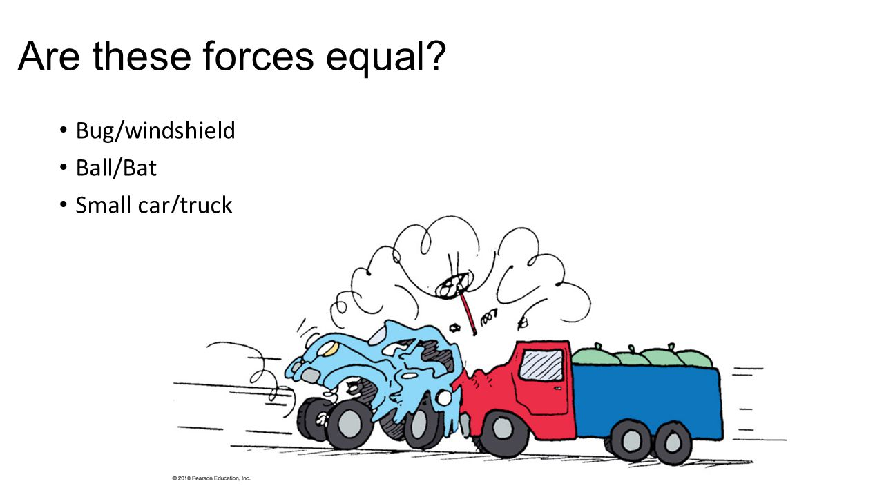 Are these forces equal Bug/windshield Ball/Bat Small car/truck