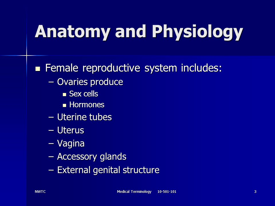 Medical Terminology Chapter 12 Reproductive System - ppt download