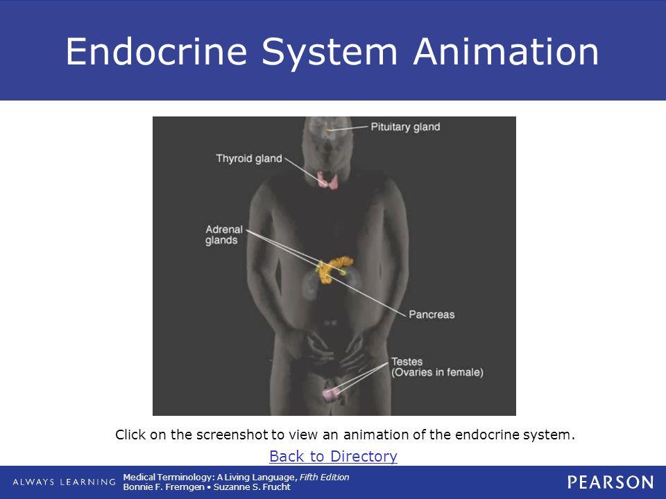 11 Endocrine System Ppt Download