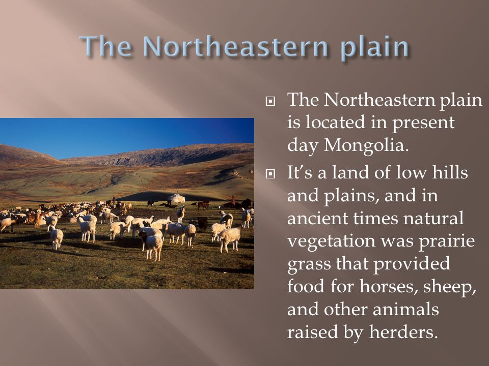 The Northeastern plain