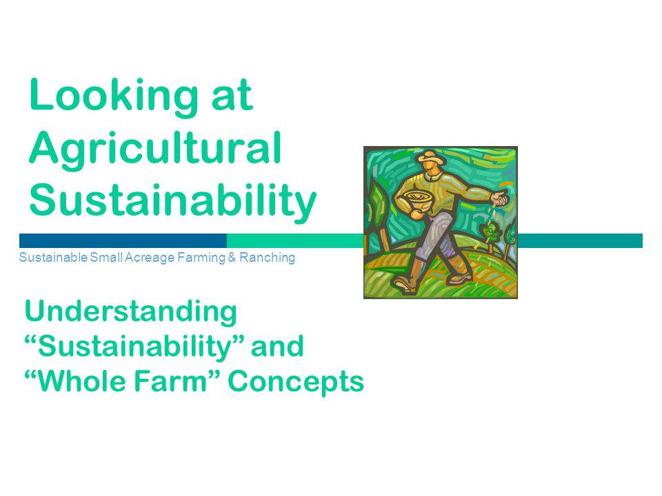 Looking at Agricultural Sustainability