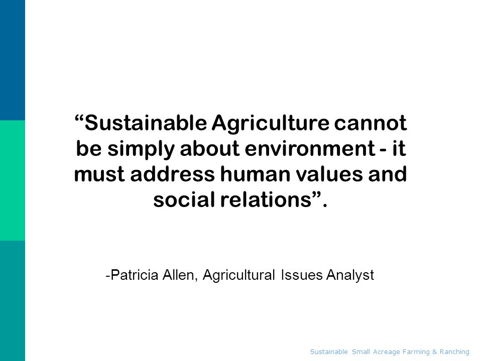 -Patricia Allen, Agricultural Issues Analyst