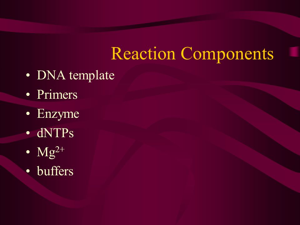 Reaction Components DNA template Primers Enzyme dNTPs Mg2+ buffers