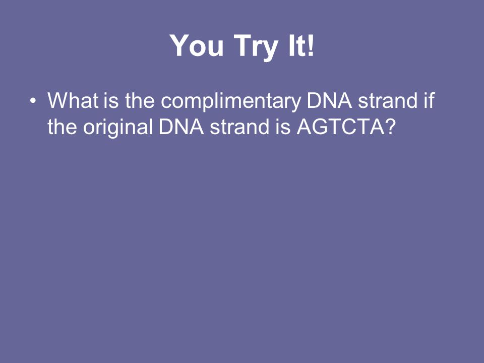 You Try It! What is the complimentary DNA strand if the original DNA strand is AGTCTA