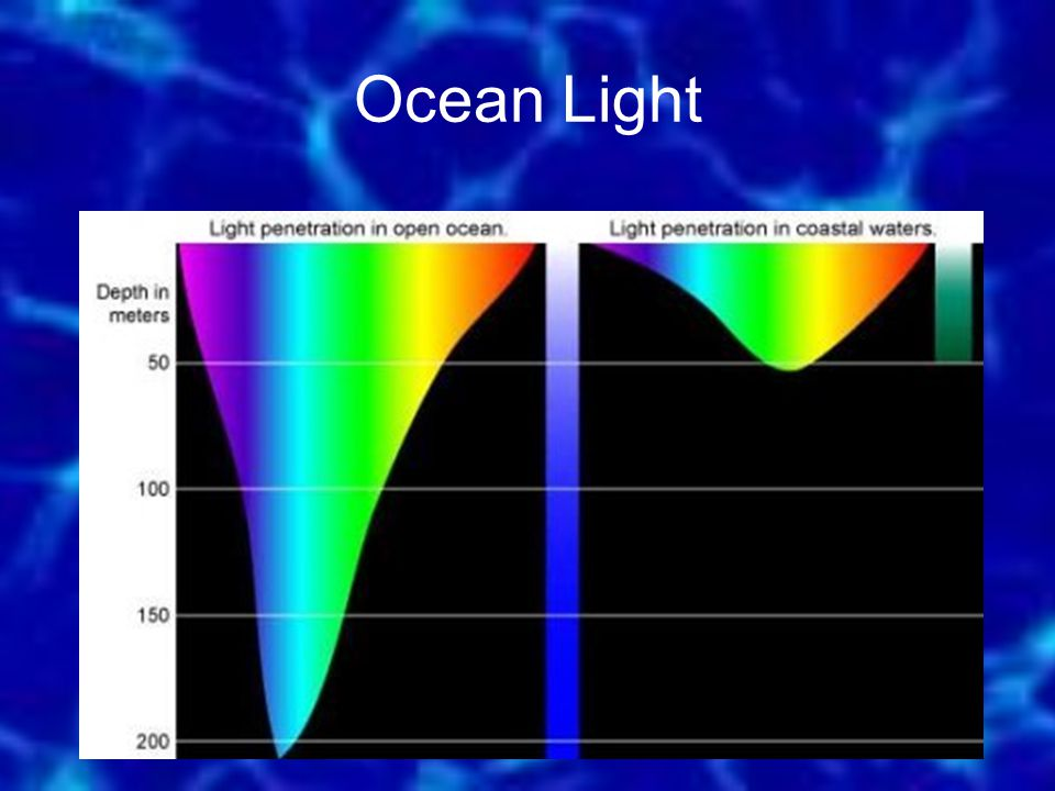 Light penetration open ocean — photo 1