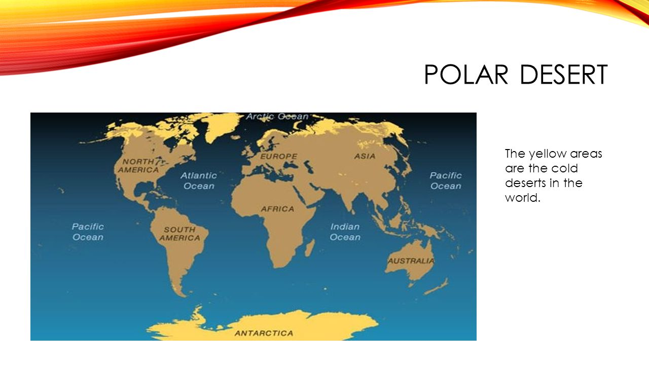 The desert biomes tropical and polar by emily griffin ppt video 13 polar desert the yellow areas are the cold deserts in the world gumiabroncs Images