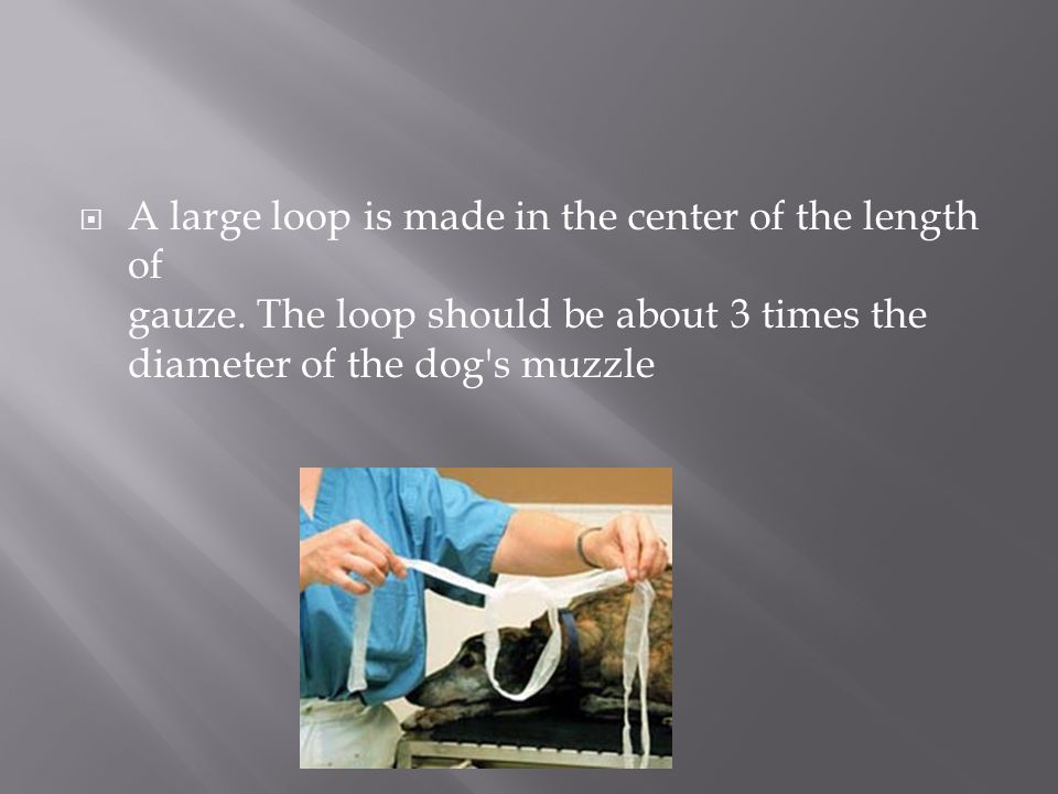 A large loop is made in the center of the length of gauze