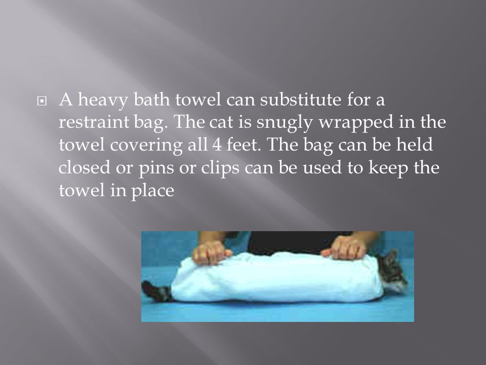 A heavy bath towel can substitute for a restraint bag
