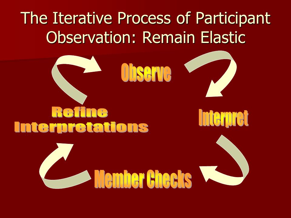 The Iterative Process of Participant Observation: Remain Elastic