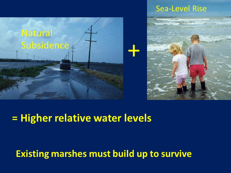 + = Higher relative water levels Natural Subsidence