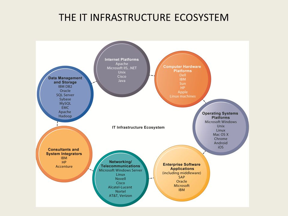THE IT INFRASTRUCTURE ECOSYSTEM
