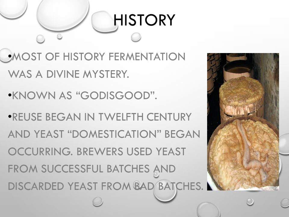 History Most of history fermentation was a divine mystery.