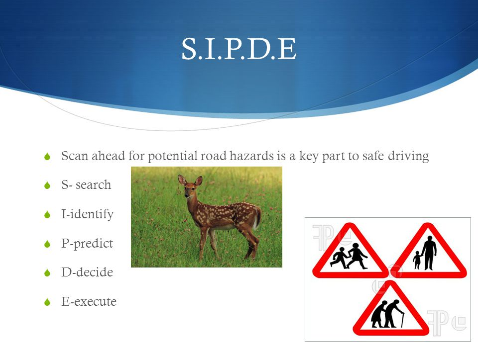 S.I.P.D.E Scan ahead for potential road hazards is a key part to safe driving. S- search. I-identify.