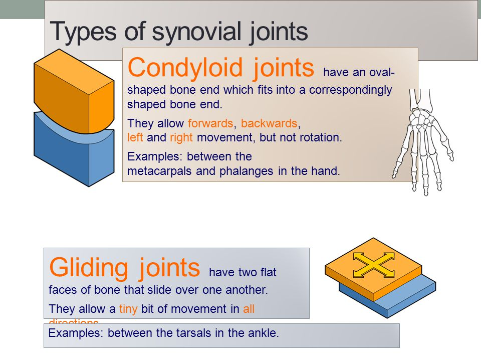 Joints and their classifications ppt video online download.
